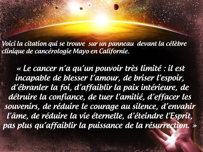 Connu Le cancer n'arrive pas à tout détruire.. - Inspiration du  WL13