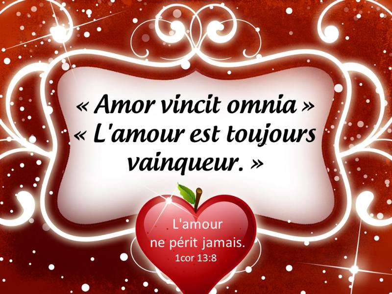 Amor vincit omnia citation d'amour