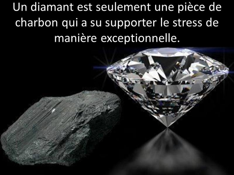 diamant1 dans Chicane